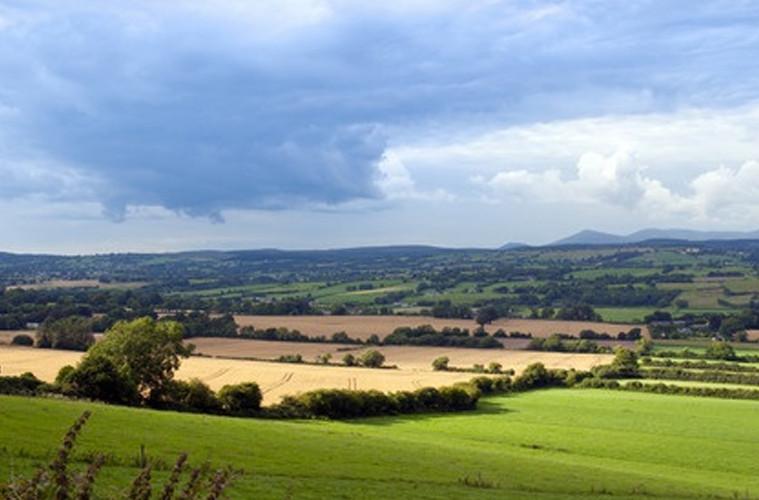 The Quiet Irish Farmer By