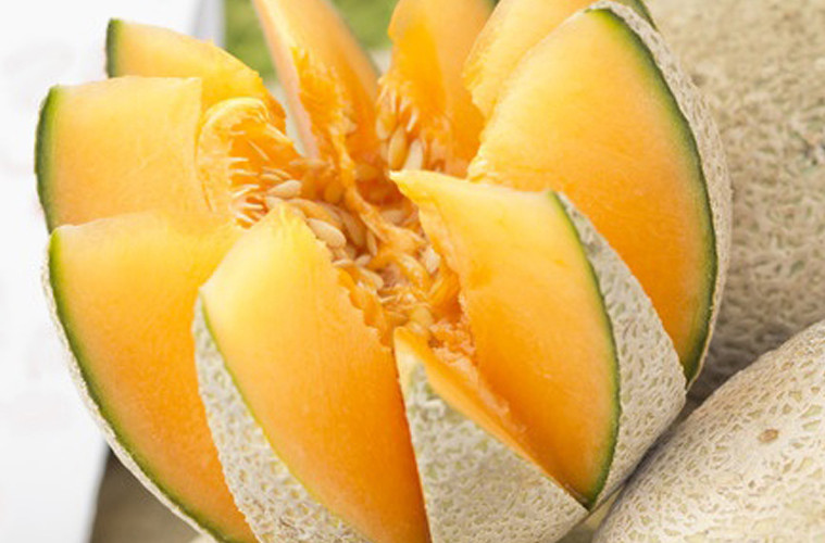 Cantelope By